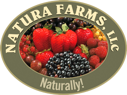 Natura Farms logo